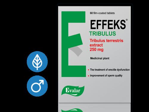 effeks-categories-2